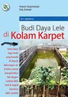 Budidaya Lele di Kolam Karpet