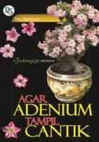 Agar Adenium Tampil Cantik