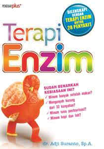 Terapi Enzim